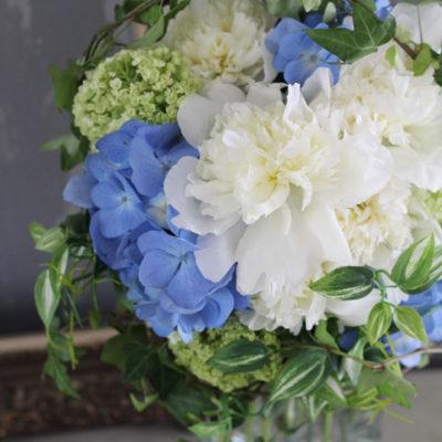 fresh_blue5