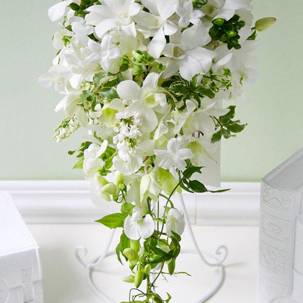 白い蘭、デンファレを使ったキャスケードブーケ